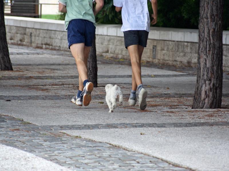 Proč začít běhat a na co si dát pozor?