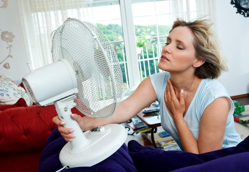 Při menopauze pomůžou fytoestrogeny